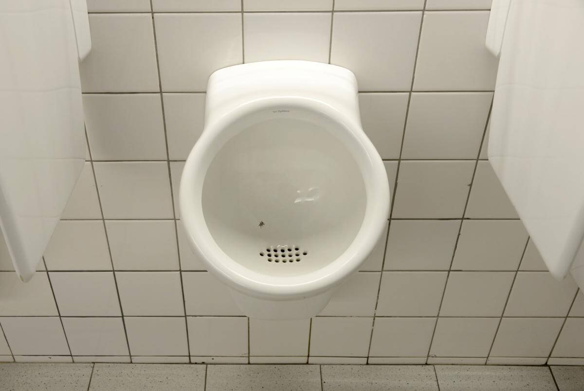 Fly-in-the-urinal-nudge-theory